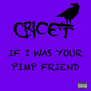If I Was Your Pimp Friend