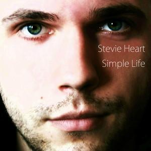 Simple Life album