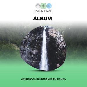 Álbum Ambiental de Bosques en Calma