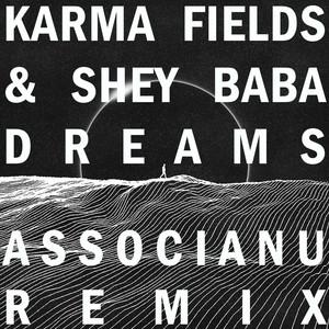 Dreams (Associanu Remix)