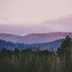 Tender Nature Infused Melodies | Sleep