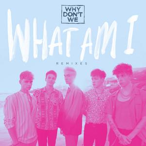 What Am I (Remixes)