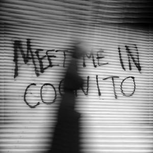 Meet Me in Cognito album