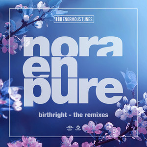 Birthright (The Remixes)