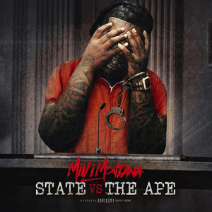 State VS the Ape