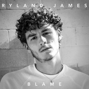 Blame cover art