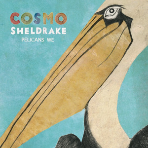 Pelicans We - Cosmo Sheldrake