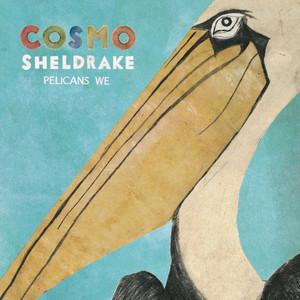 Pelicans We - Cosmo Sheldrake