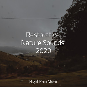 Restorative Nature Sounds 2020 - Soothing Beach Waves