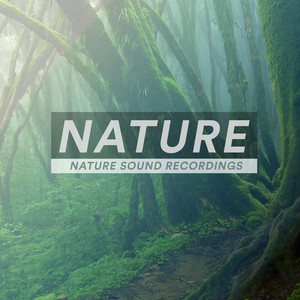 Exotic Nature cover art