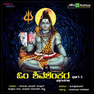 Vijay Aurs