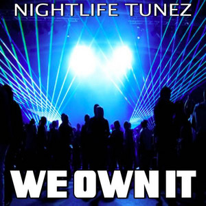 We Own It - Tribute to Wiz Khalifa and 2 Chainz cover art