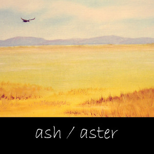 Ash / Aster
