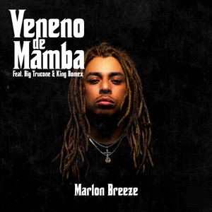 Veneno de Mamba