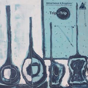 Trip or Trip - Sozonov Dub Mix cover art