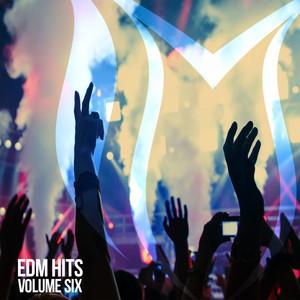 EDM Hits, Vol. 6