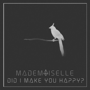Did I Make You Happy? cover art