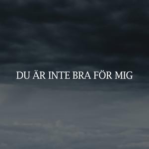 DU ÄR INTE BRA FÖR MIG