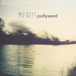Pollyseed - Muskets