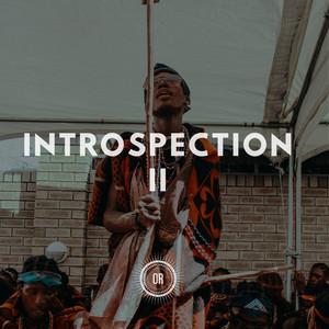 Introspection Part II