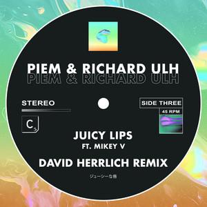 Juicy Lips (David Herrlich Remix)