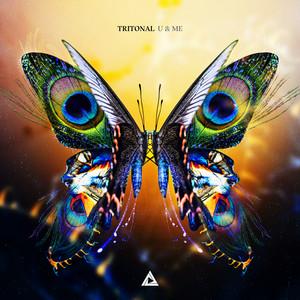 Tritonal – Medicine ft. LEVV (Studio Acapella)