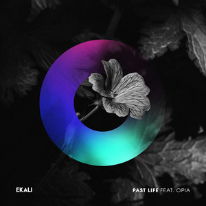 Past Life (feat. Opia)