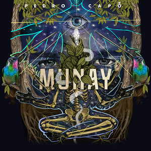 Calma - Remix cover art