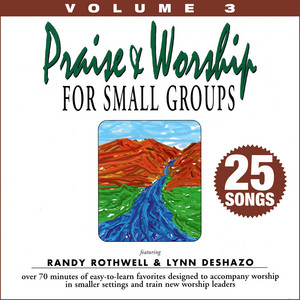 Praise & Worship for Small Groups, Vol. 3 (Whole Hearted Worship) album