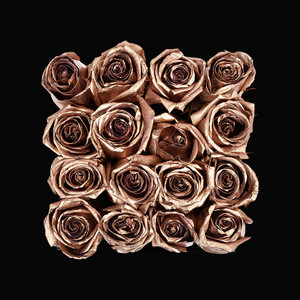 Rose Gold cover art