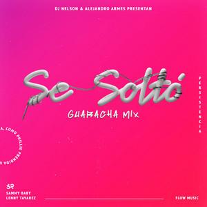 Se Soltó (Guaracha Remix) [feat. Alejandro Armes]