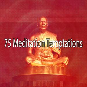 75 Meditation Temptations