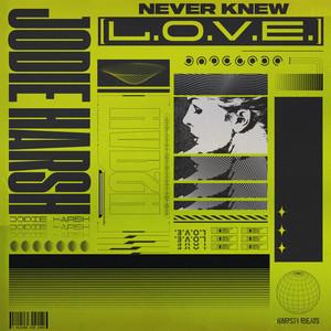 Never Knew (L.O.V.E.)