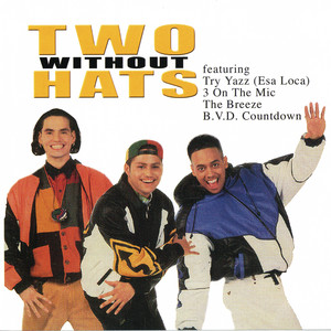 Two Without Hats profile picture