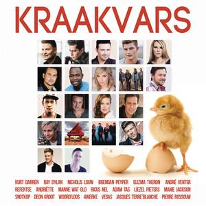 Toe Vind Ek Jou cover art