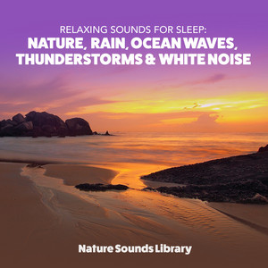 Nature Sounds Library profile picture