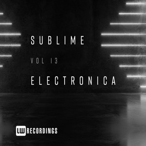 Sublime Electronica, Vol. 13