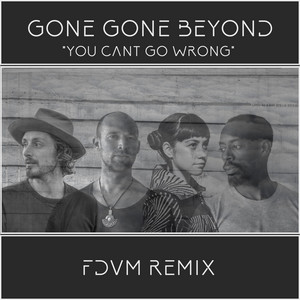 You Can't Go Wrong (Fdvm Remix)