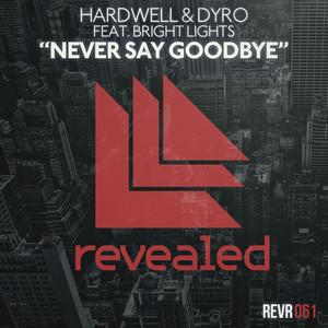 Hardwell & Dyro, Bright Lights – Never Say Goodbye (Acapella)
