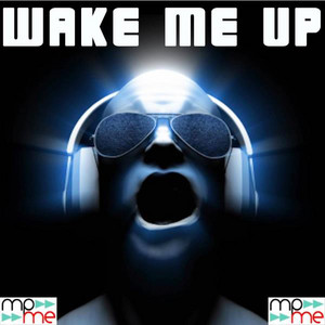 Avicii & Aloe Blacc - Wake Me Up