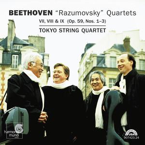 Quartet VIII No.2 In E minor, Op.59: III. Allegretto