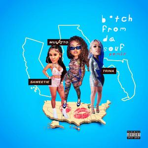 B*tch From Da Souf (Remix)