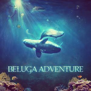 Beluga Adventure