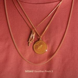 Gouldian Finch 3 - Yas