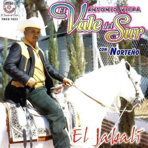 Antonio Viera El Vale Del Sur