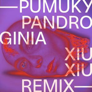 Pandroginia (Xiu Xiu Remix)