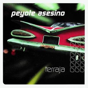 Perkins by Peyote Asesino