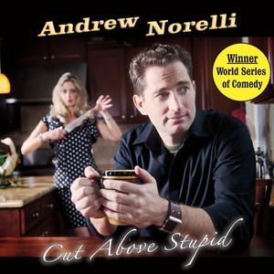 Cut Above Stupid Audiobook