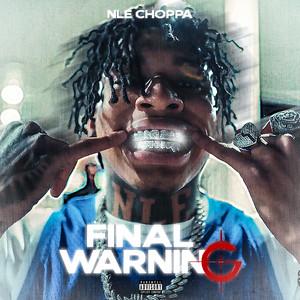 Final Warning cover art