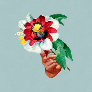 Beginner's Luck cover art